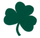 Lafayette Fighting Irish